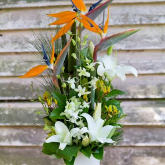 Tropical Flower Arrangement Woombye Florist